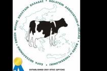 Ένωση Χολστάιν: Αναπτυξιακός πόλος η ελληνική αγελαδοτροφία