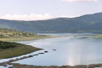 Ημερίδα για τα ψάρια του γλυκού νερού από τον ΕΛΓΟ-Δήμητρα
