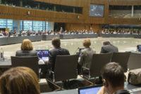 Η κατάσταση στην ευρωπαϊκή αγορά χοιρινού, στο τραπέζι του Συμβουλίου Υπουργών Γεωργίας της Ε.Ε.