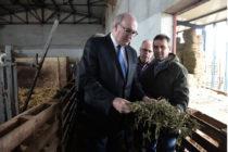 Για στήριξη της εγχώριας αιγοπροβατοτροφίας μιλούν Κομισιόν και ΥΠΑΑΤ