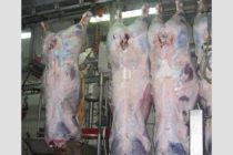 Έναρξη λειτουργίας με διαδικασία έγκρισης τα σφαγεία, και γνωστοποίησης τα πτηνοσφαγεία