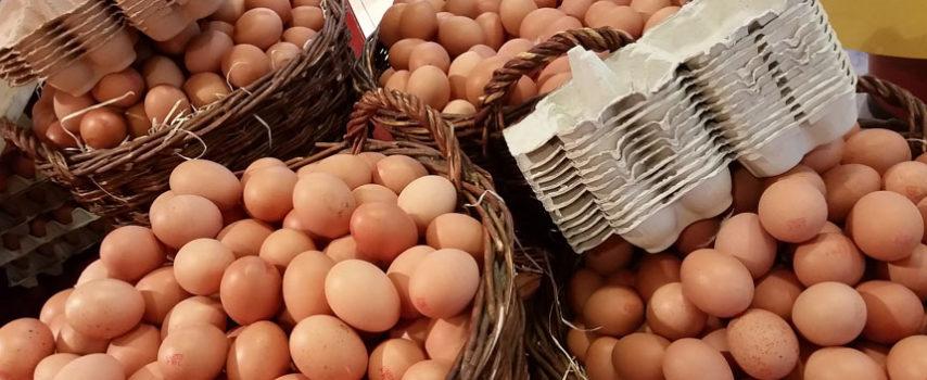 Εκτίμηση του κινδύνου για τη Δημόσια Υγεία, από τη μόλυνση των αυγών με Fipronil