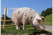 Ξανά αμερικανικό χοιρινό στην Αργεντινή, ύστερα από 25 χρόνια απουσίας
