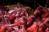 ΙΕΛΚΑ: 2 στους 3 καταναλωτές θεωρούν ότι πρέπει να απαγορευτεί η πλαστική σακούλα